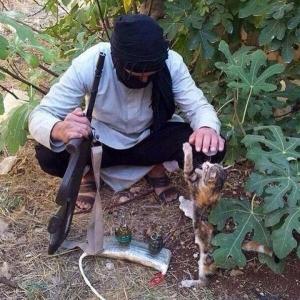 Djihadiste ? Pas djihadiste ? Non ! Car les djihadistes n'aiment pas les chats. Ici, il s'agit sans doute d'un homme très normal déguisé en djihadiste pour amuser ses enfants ou pour se rendre à un bal costumé